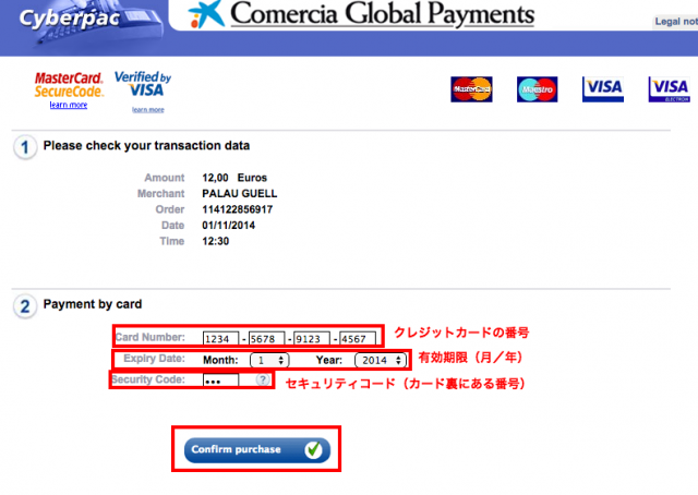 Virtual TPV Payment form2